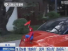 车顶坐蜘蛛侠很炫酷? 交警:系违法行为