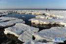 奇特的极地冰原景观!