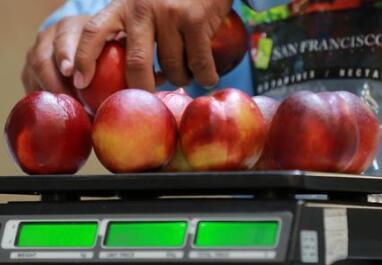 智利水果的生意经