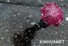 这轮降雪到底有多强?杭城中到大雪 山区局部暴雪
