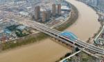 龙港大桥正式通车