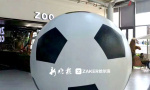 """黑龙江制作出号称""""世界最大""""的足球 正在申报吉尼斯"""