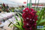 三八节哈尔滨女人礼物:200元花束卖得最火