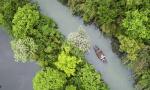 杭州人均公共绿地面积增两倍,森林覆盖率连续三年居副省级城市首位