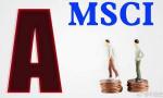 纳入MSCI指数体系 洛阳钼业通过ESG评测