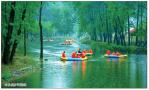 走近河南嵩县旧县:这里有个中国森林第一漂