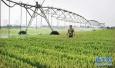 顺应农业发展新形势 山东走出品牌农业强省之路