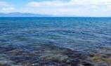 依法呵护那片有生命的海
