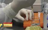 17种抗癌药纳入医保 原价15600元的药如今2396元买到