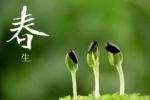 杭州昨入春!气温继续回升 浙江的入春名单持续增加中