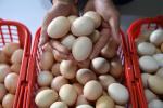 5月蛋价较3月上涨19% 为何上涨?