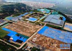 郑州考古实证5000多年前中国先民已育蚕制丝