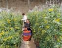 河南南乐:汇聚科技力量 助推乡村振兴