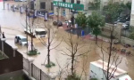 旅顺大暴雨城区积水严重 这份暴雨防御攻略快拿走