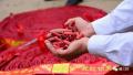 时隔23年,济南春节也禁放烟花爆竹,这次玩真的了