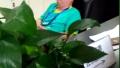河南一公务员上班时间当众睡觉 缘何被强势围观?
