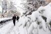 宁波降雪集中时段或持续到周五上午,平原部分地区中到大雪