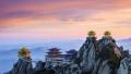 河南洛阳:全域旅游助推国际文化旅游名城建设