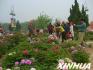 枣庄、菏泽被授予第五届山东省级文明城市称号