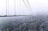 """看了一眼吓得腿软!浙江磐安""""华东第一高空玻璃桥""""你敢走吗?"""