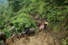 难民涌入孟加拉国
