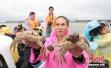 又到一年吃蟹季 80、90后女性成为消费主角