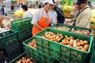鸡蛋价格还会涨吗?农业部预测蛋菜价格走势