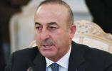 发展中国家八国集团寻求加强合作应对挑战