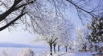 松花江畔今冬首现雾凇