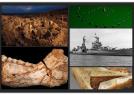 美杂志评2017十大考古发现