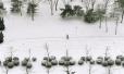 明日至27日河南部分地区将有暴雪 局部积雪25~30cm