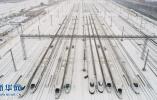 动车停库避风雪 部分区段列车停运