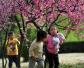 郑州:开满鲜花的东风渠畔游客如云