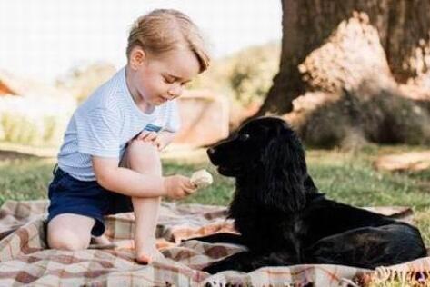 英国公主王子成长史