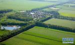 山东:国家森林城市奖1000万 省级森林城市奖500万