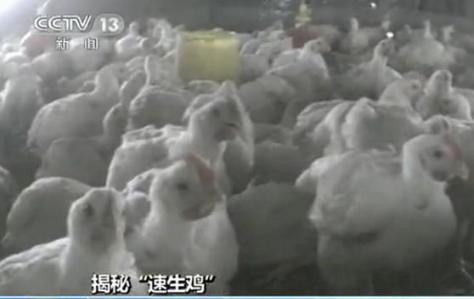 平安彩票合法吗:商务部裁定原产于巴西进口白羽肉鸡产品存在倾销