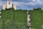 50米高绿色巨瀑