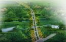 郑州107辅道等三处生态廊道年底前建成 至少建2~3个郊野公园