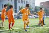 2020年山东全省校园足球特色学校要达2000所