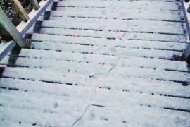 河南现今冬第一场雪?气象相关人员表示:这算不上初雪