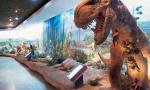 大连自然博物馆常设展厅有9个 两小时参观攻略