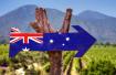 一季度来澳国际学生增15% 中国需求增长最强