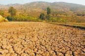 山东半岛持续干旱!