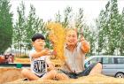 河南延津:种优质麦,一年赚辆小轿车