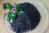 黑芝麻怎么吃比较好 黑芝麻的功效与作用
