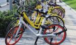 """南京共用單車達45萬輛 專家:給""""單車""""更大空間"""