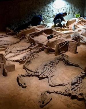 古城洛阳打造博物馆之都