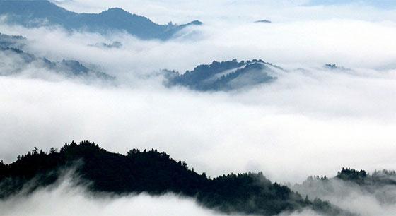 江西遂川:云雾缭绕 似水墨丹青人间仙境