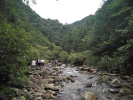 生态环境部:浙江武义县违规撤销牛头山县级自然保护区