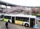 秦皇岛森林逸城汽车站启用 6条公交线路调整走向
